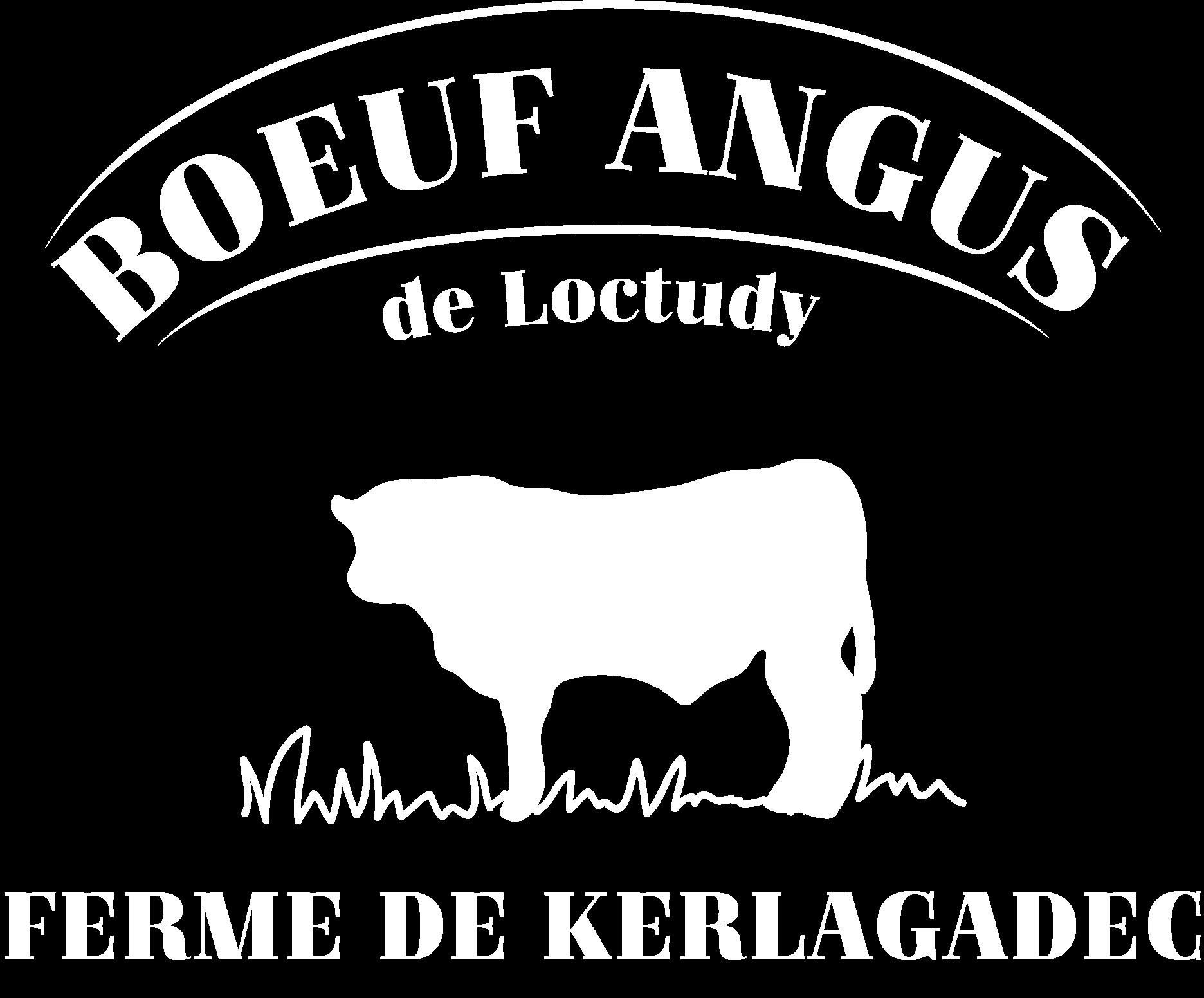 logo blanc Angus de Loctudy