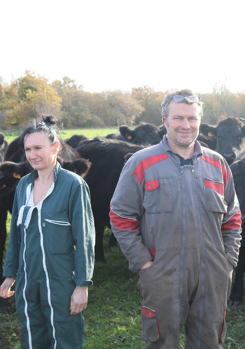 Marc et Florence eleveurs de boeuf Angus à Loctudy